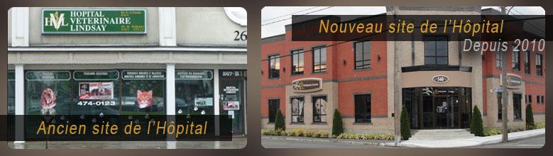 Vétérinaire Drummondville: Hôpital Vétérinaire